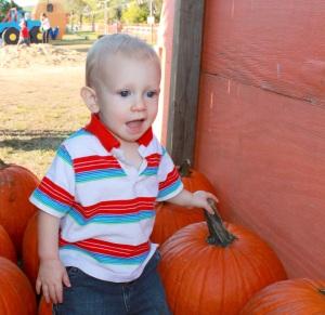 max pumpkin 10-13